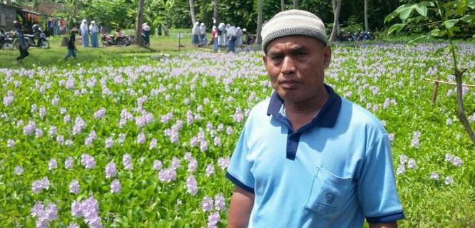 Karsono, pemilik taman bunga eceng gondok bantul (foto: liputan6)