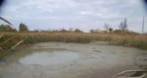 ilustrasi kolam lumpur (foto: koi-bito.com)