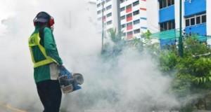 Pengasapan Pencegahan Virus Zika (foto: vietnamplus.vn)