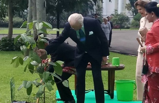 Kunjungan Raja dan Ratu Swedia di Istana Kepresidenan Bogor (foto: Berita Satu)