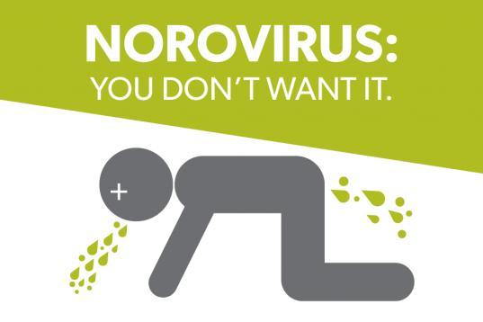 Norovirus (foto: http://thehealingfrequency.com)