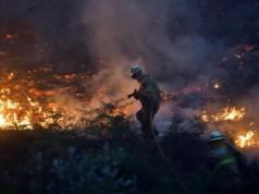 kebakaran hutan di Portugal (foto: Reuters)