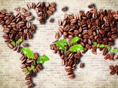 ilustrasi Hari Kopi Sedunia