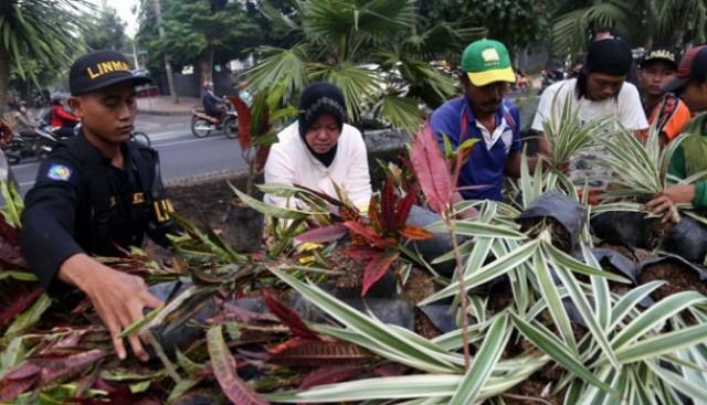 Pemkot Surabaya dan Masyarakat Bahu-membahu Mewujudkan Taman Kota yang Asri (foto: Tempo)
