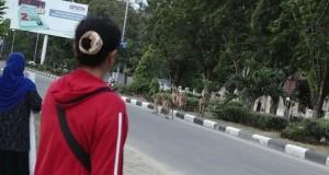 Warga melihat kawanan rusa berkeliaran di tengah Kota Palu pascagempa (foto: Kompas)