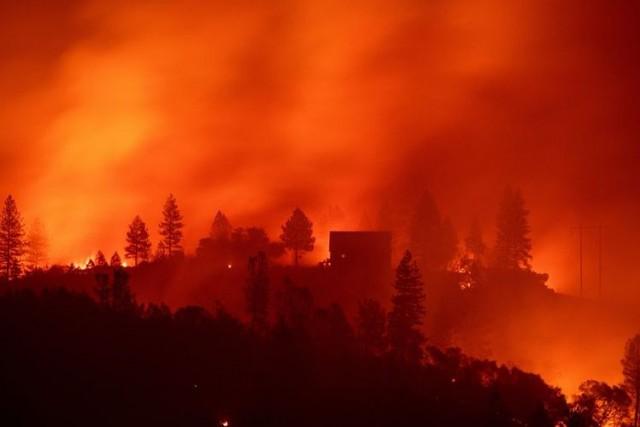 Kebakaran hutan di California (foto: AFP)