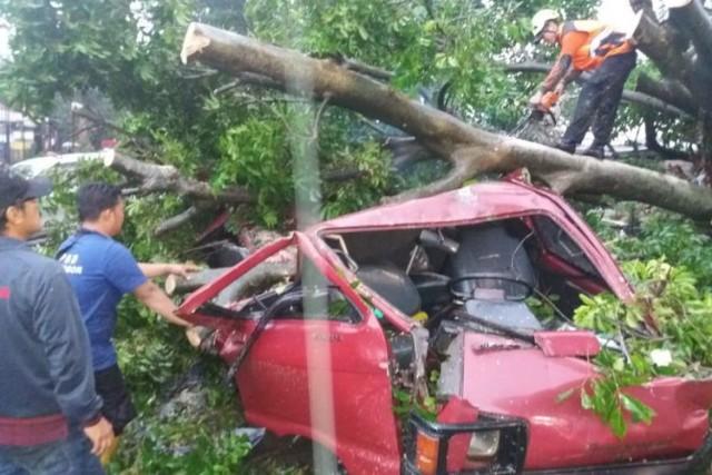 Puting Beliung Melanda Bogor (foto: Kompas)
