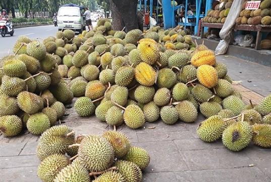 Ilustrasi durian (foto: Tribun)